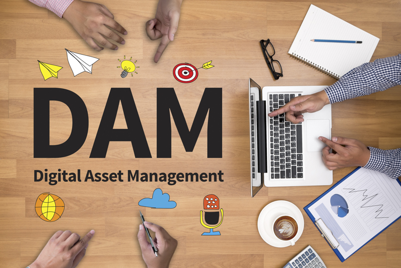 Oh DAM (Document Asset Management)